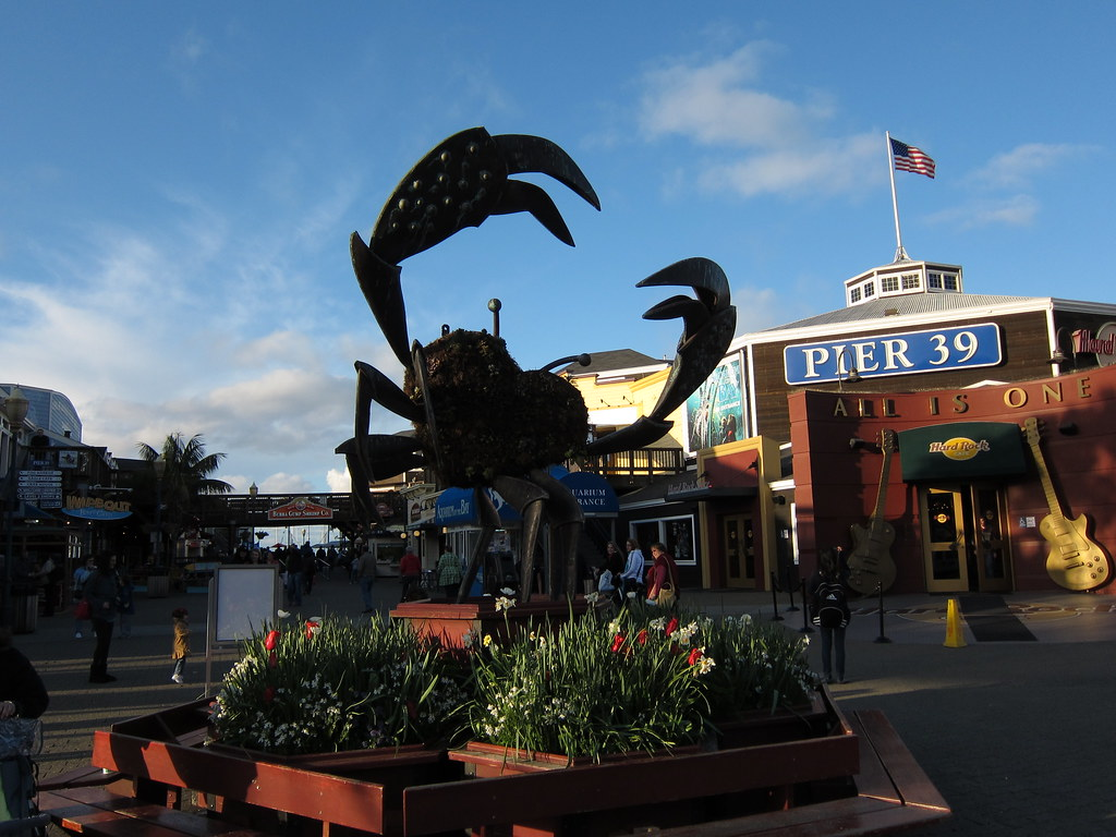 pier 39 crab this is the logo for pier 39 bfishadow