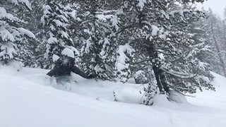 Aaron shreds the gnar | by cyberhobo