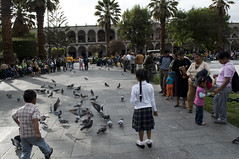 Take a walk at the Plaza de Armas - Things to do in Arequipa