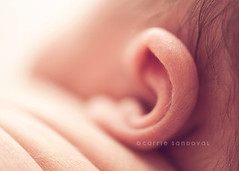 Happy New ear... | by carrie sandoval