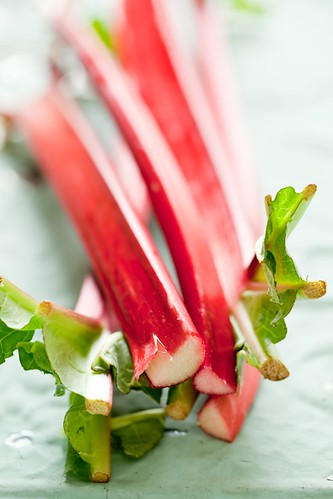 Rhubarb Still | by tartelette