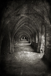 Fountains Abbey | by clint hudson