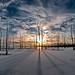 Frozen Manasquan Reservoir Sunrise