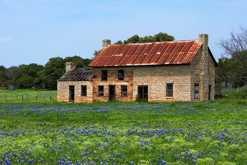 Life and death in the hill country