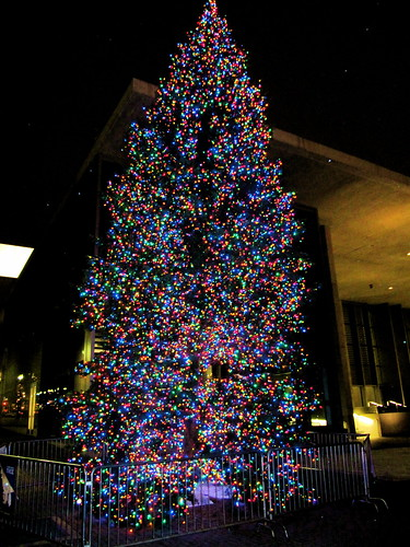 Image Result For Colored Christmas Lights