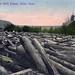 Log Jam on North Palouse, circa 1910 - Colfax, Washington