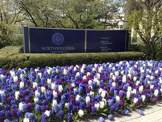 Northwestern University | by Marit & Toomas Hinnosaar