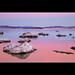 Pink Sunset - Mono Lake, Lee Vining, California, USA