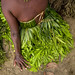 Vegetal skirt - Papua New Guinea