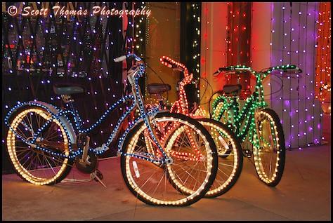 Osborne Family Christmas Lights