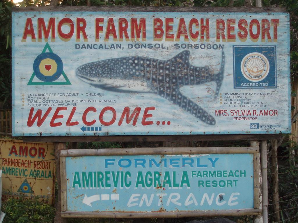 Vagamundos 2006. Filipinas. Donsol. Buceo con tiburones ballena