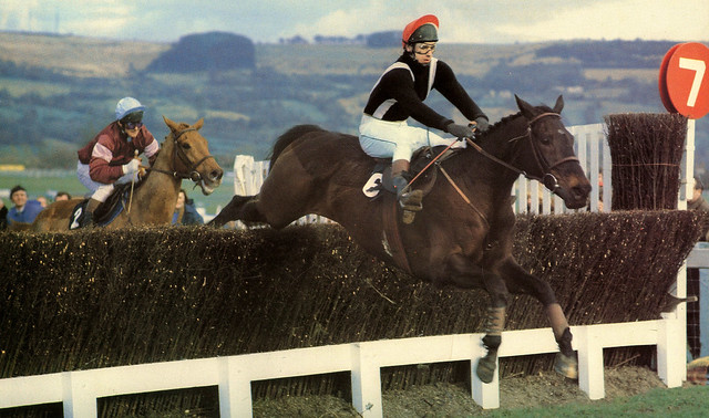 Silver Buck wins the Cheltenham Gold Cup on 18th March 1982