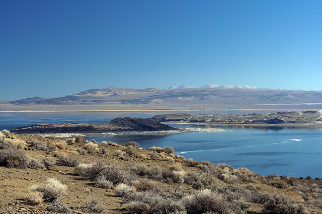 White Mountains from North Shore of Mono Lake