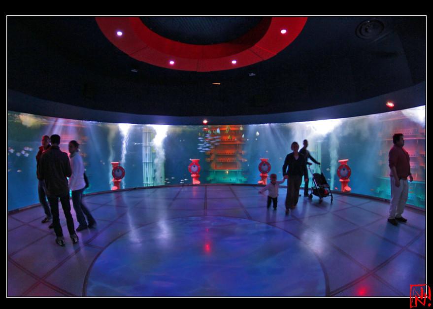 grand aquarium malo 2 12 le grand aquarium de flickr