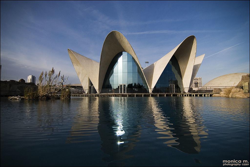 Oceanografic Valencia Parco Oceanografico Di Valencia