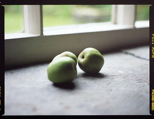 Apples | by spoonergregory