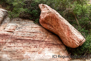 Red-Rock-Canyon-Calico-Basin-Rock-Nevada-2010-086.jpg | by RogueSocks