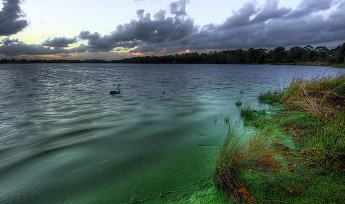 Swan Lake Rv Park Mettitt Island Fl
