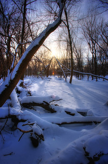 sundown in the forest preserve | by charlesgyoung