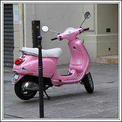 rosa rosa rosam rosae rosae rosa pink pinka pinkum flickr. Black Bedroom Furniture Sets. Home Design Ideas