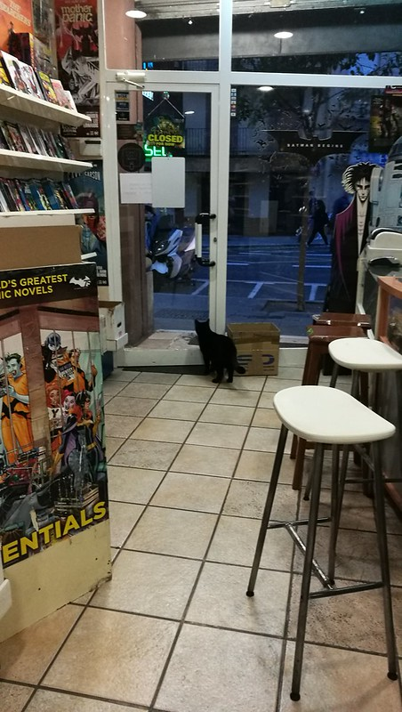Gotham Comics Valencia has the best shop cat around