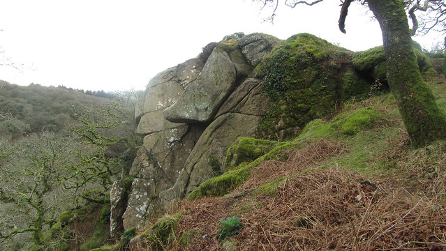 Top of one of the Dewerstone Crags