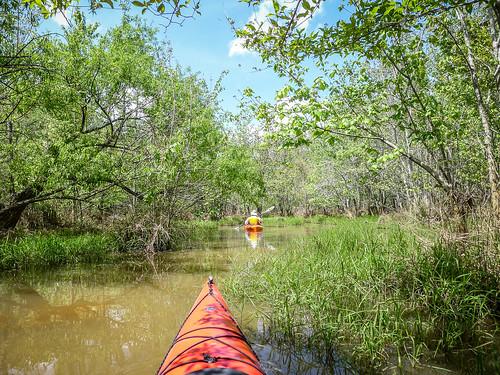 Dyar Pasture and Lake Oconee-118