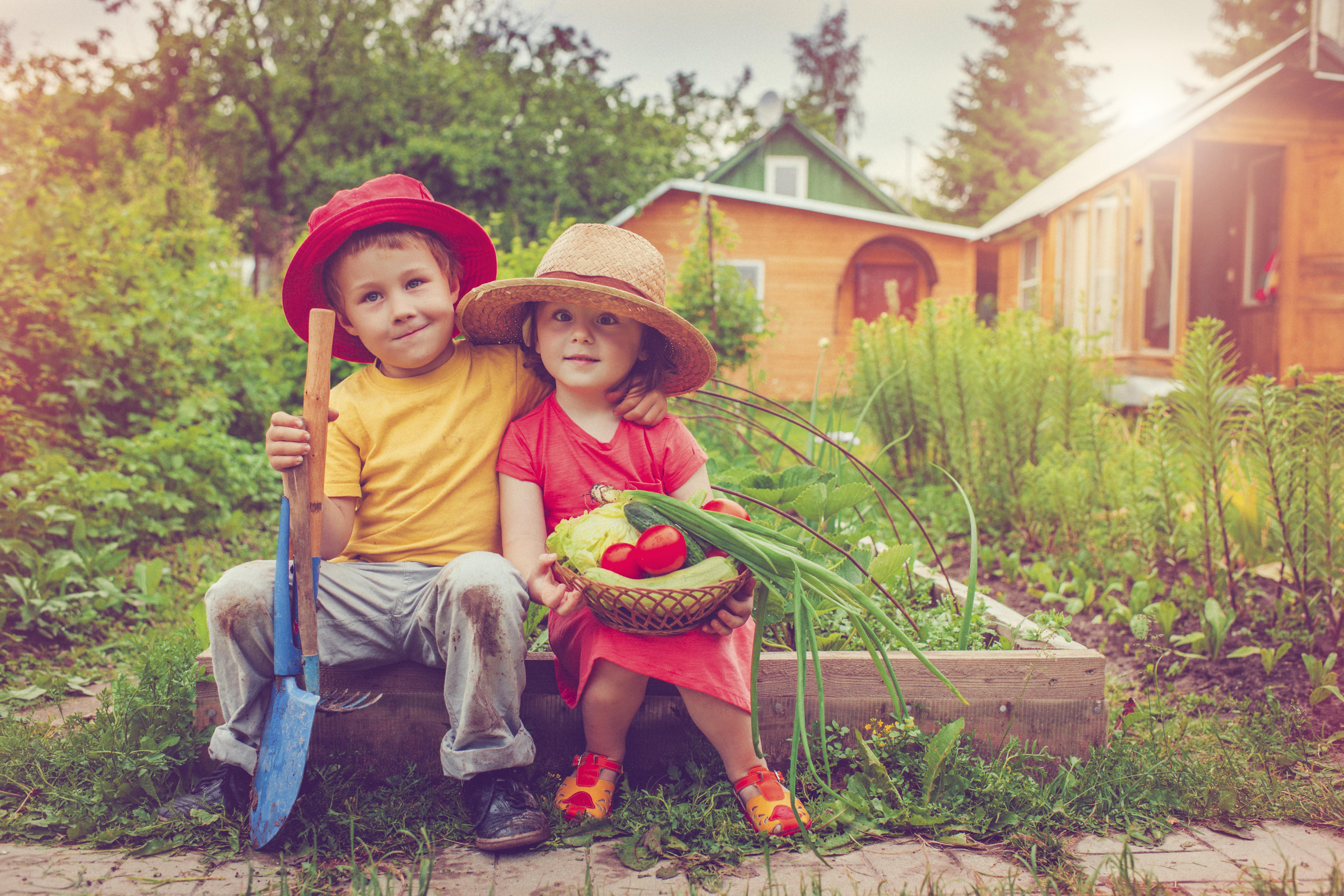 garden services, farm services, help gardening