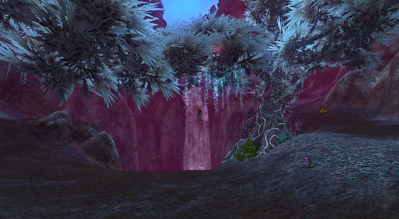 Everquest 2 random stuff