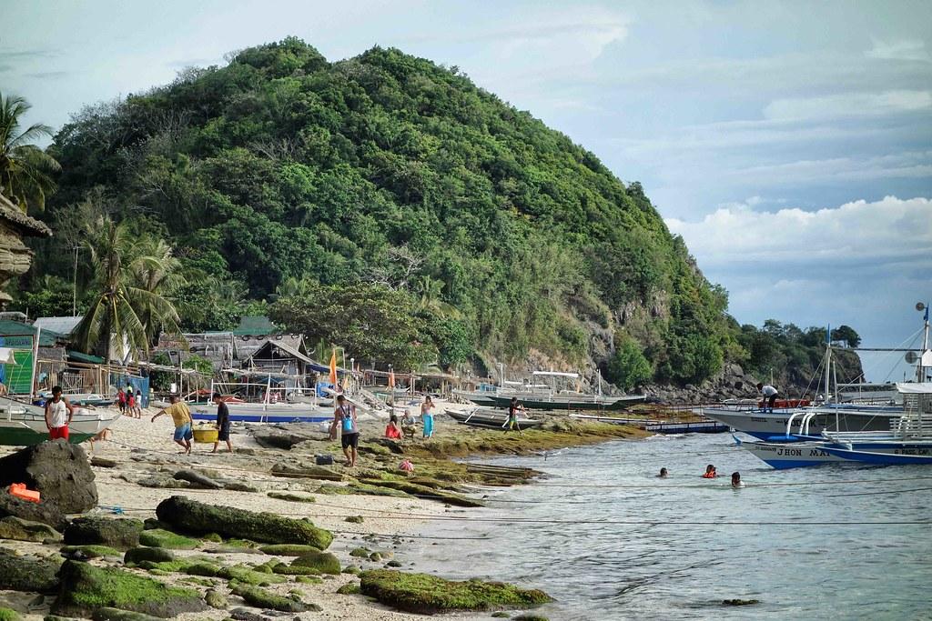 Apo Island - Plage