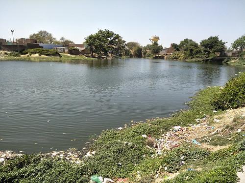 महोना गाँव का तालाब