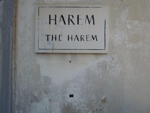 H A R E M