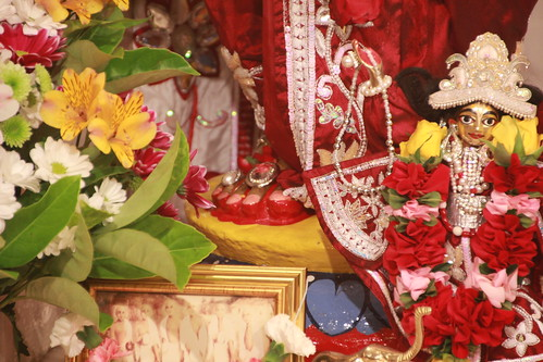 011013D (6) | by Hare Krishna Melbourne