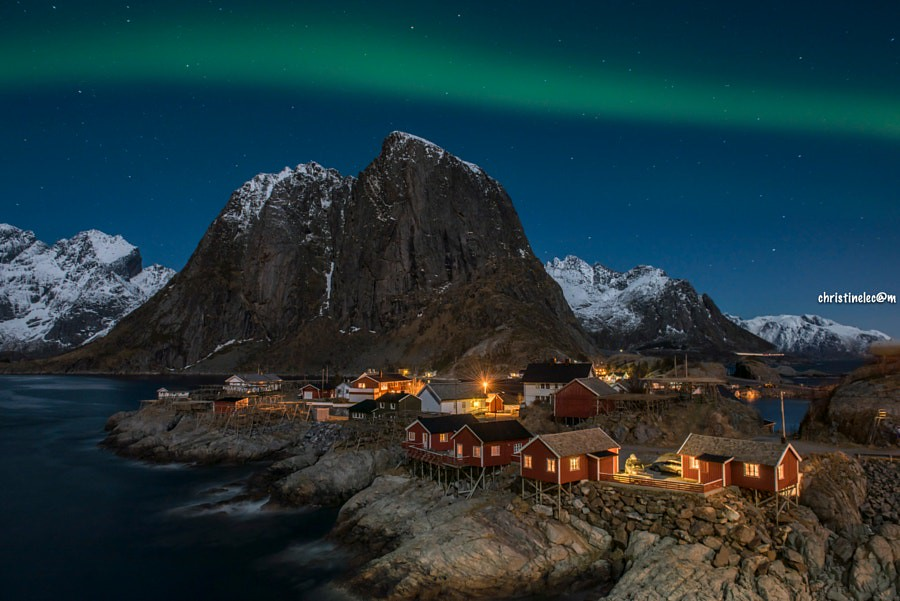 Lofoten winter #19 Northern light