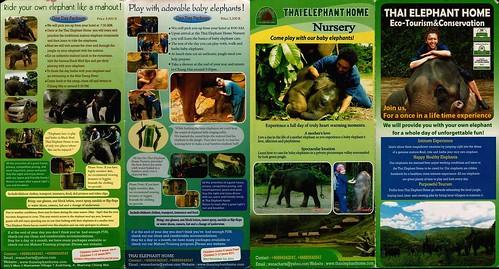 Thai Elephant Home Chiang Mai Thailand Brochure 1