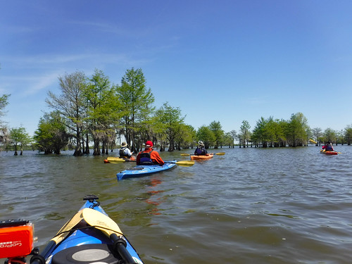Paddle to Church Island with the Tri-County Blueways Paddlers-012