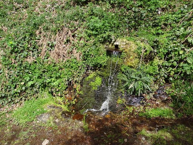 Fuente en la Ruta del Albergue a Tres Bispos - Ancares