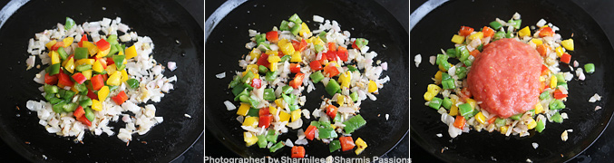 How to make Tawa paneer masala recipe - Step3