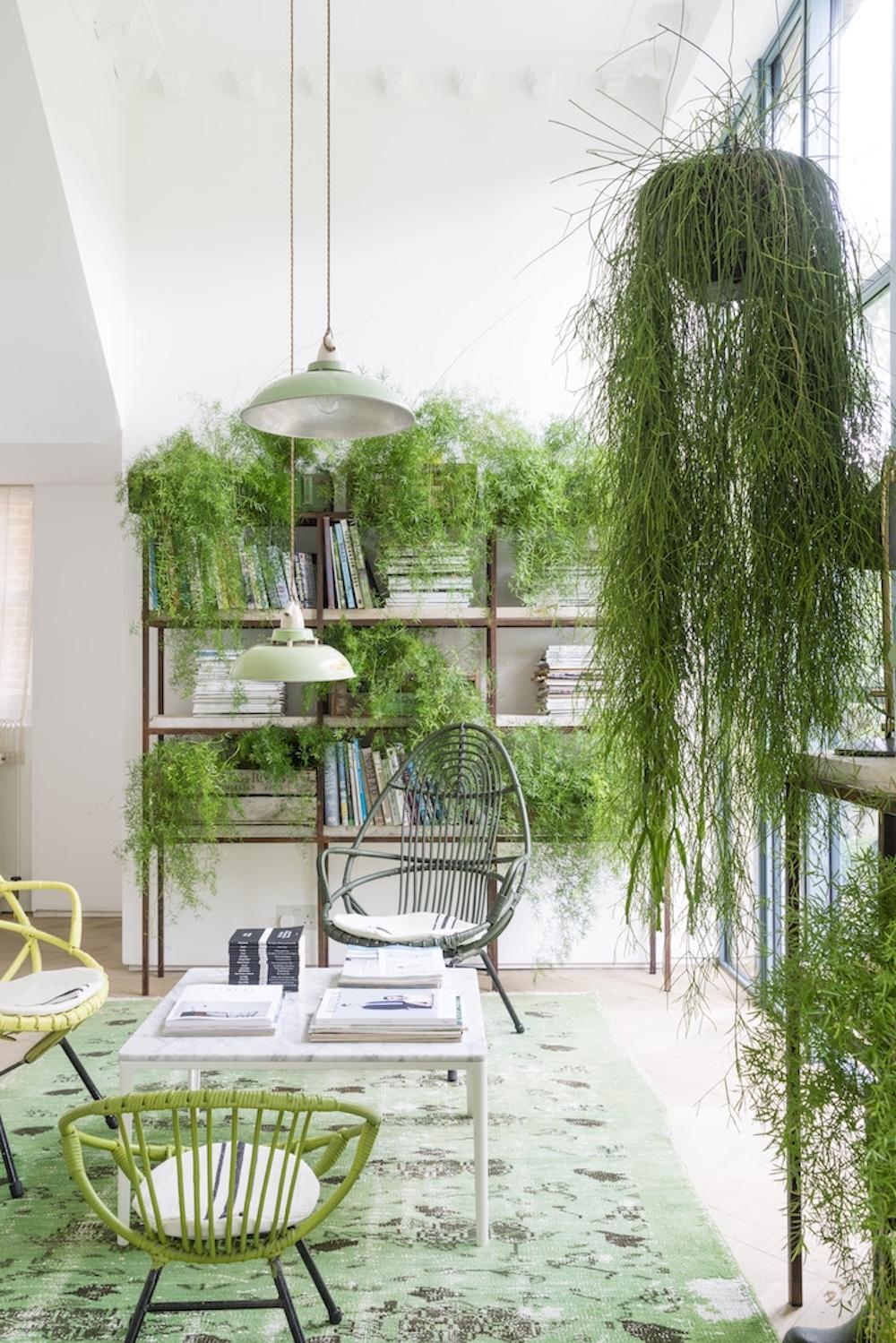 pantone greenery_house3