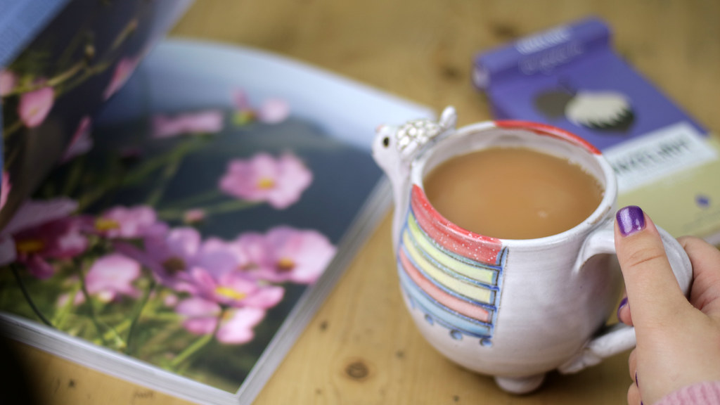 Llama Mug and Magazine