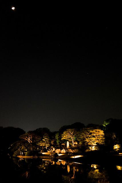 大名庭園ライトアップ 05 RAW developed