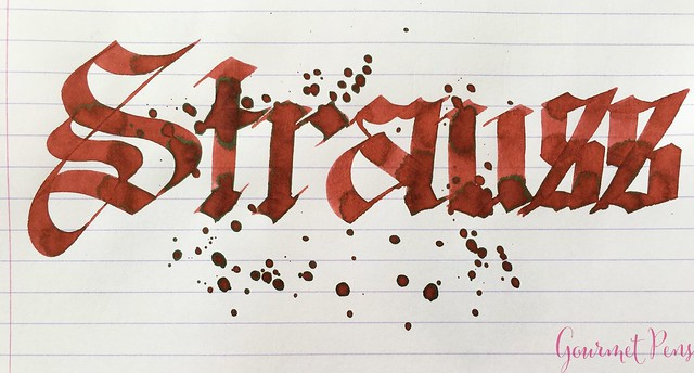 Ink Shot Review Diamine Music Strauss @AppelboomLaren 6