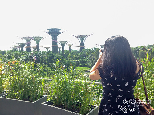 160909b MBS Marina Bay Sands to Gardens by the Bay _38