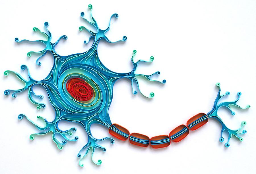 quilled neuron created by natasha molotkova of