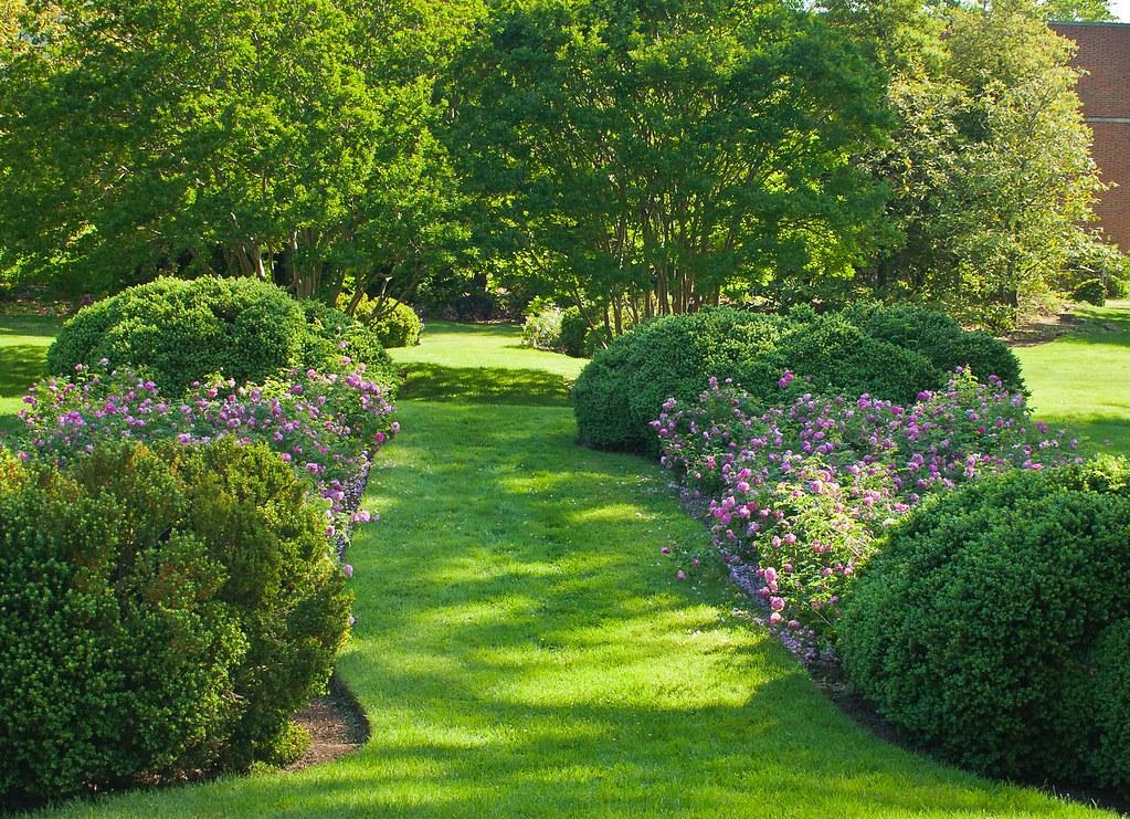 Annapolis Garden LISE MANTHA Flickr