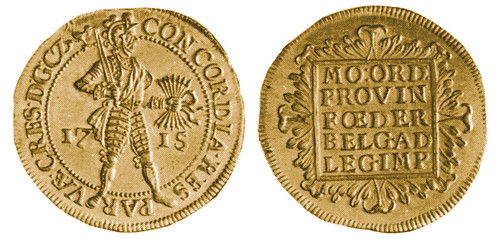 The Gelderland 1715 double ducat - Copy