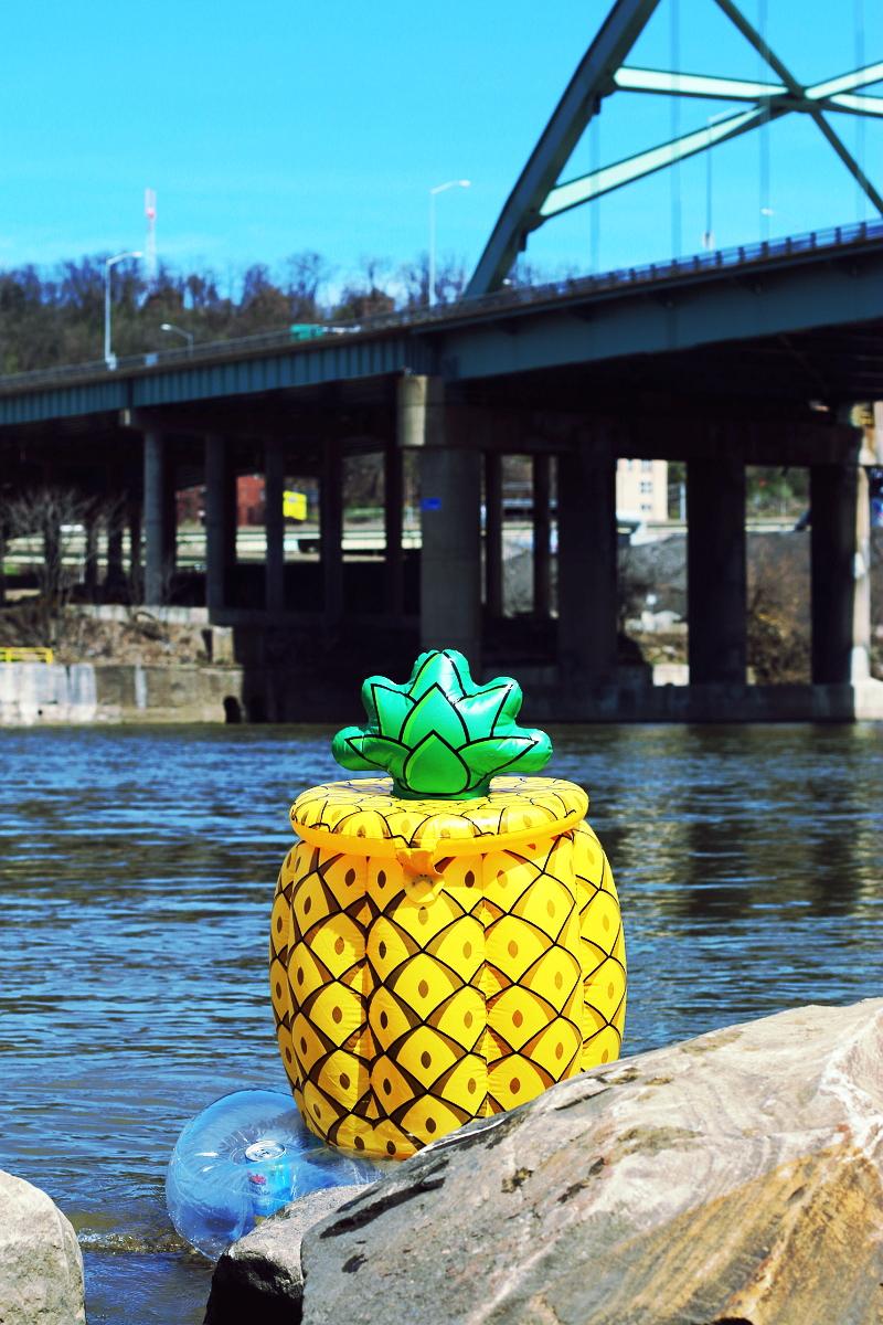 pineapple-float-1