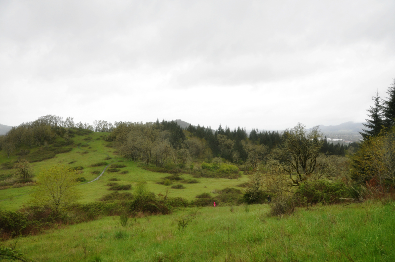 Mount Pisgah Trail @ Mt. Hope Chronicles