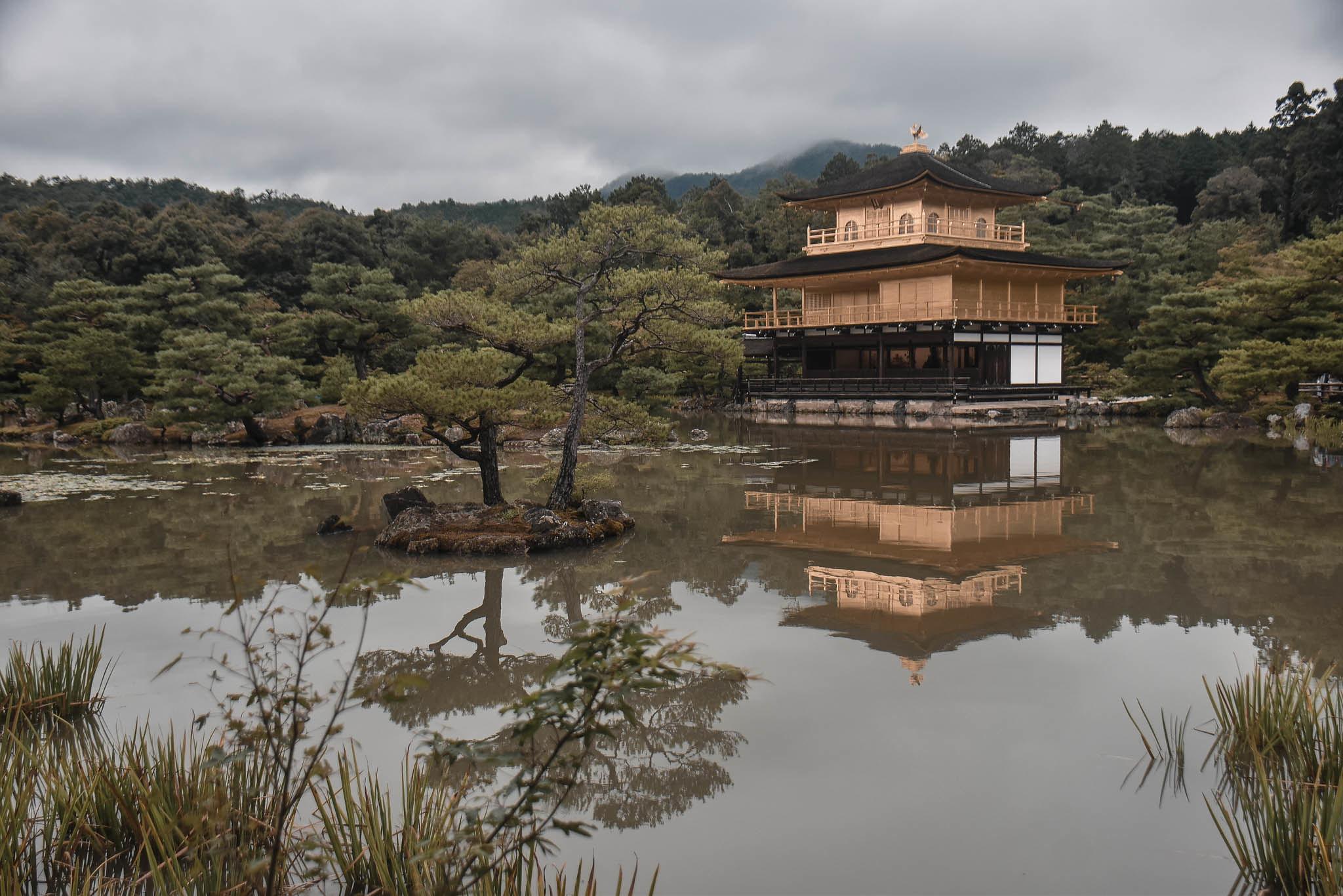 arashiyama 48 (1 of 1)