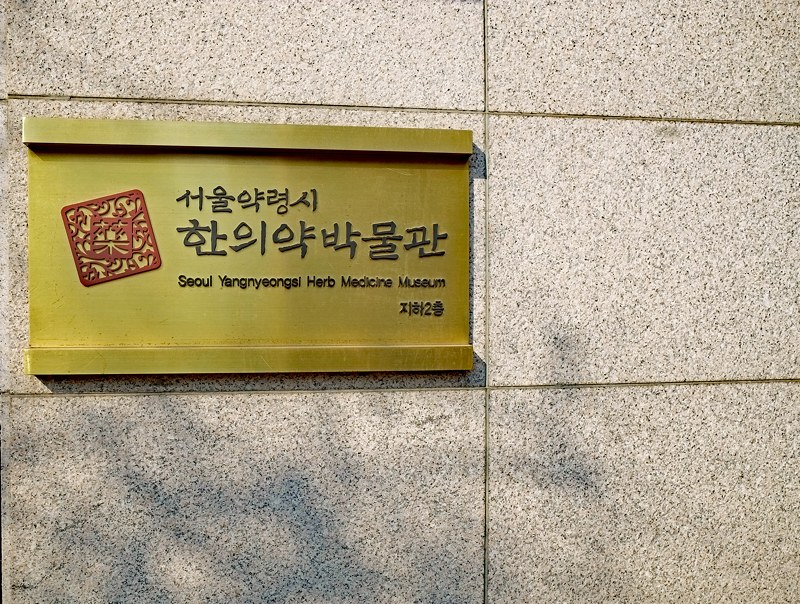 Seoul City Walking Tours